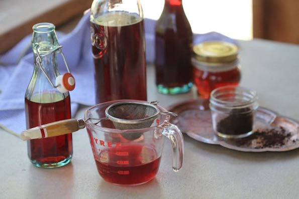 Tasmanian pepperberry Infusions